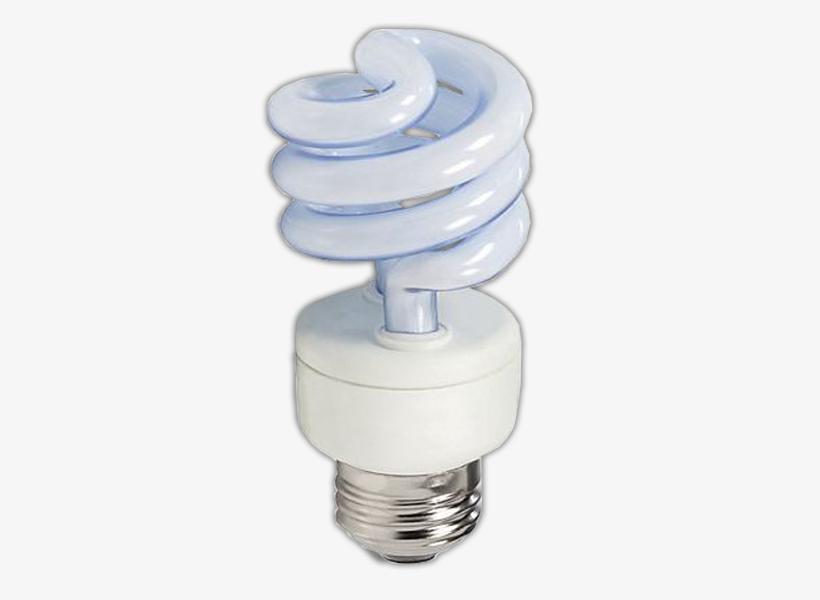 30 Watt CFL Bulb